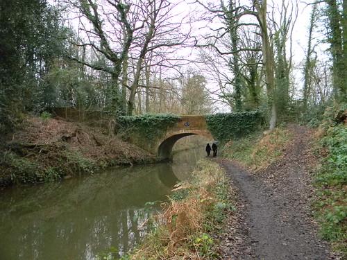 Basingstoke Canal -Basely's Bridge