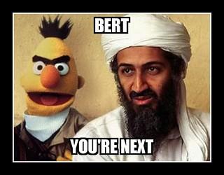 Bert Warning