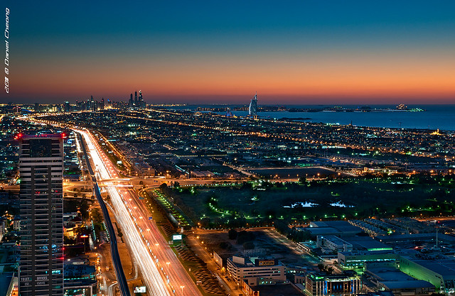 The Veins Of Dubai #7