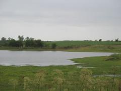 wetland, floodplain, river, plain, loch, natural environment, salt marsh, rural area, pond, waterway,