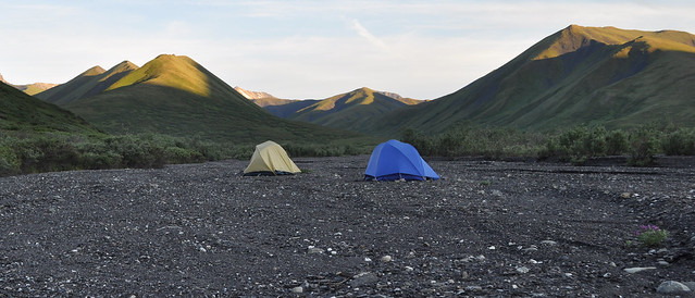 Camping in the Savage River drainage, Denali National Park, Alaska