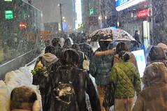 2011-Feb Sapporo