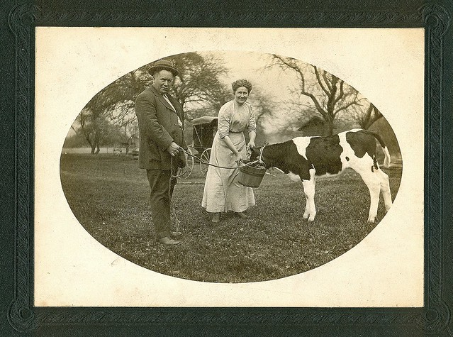 Farmer and his wife pose for pictures