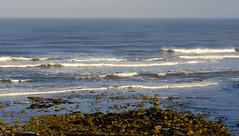 Cornelian Bay Beach