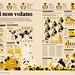 Se le api non volano by Francesco Franchi