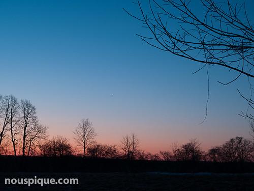 pinehousefarm snow star sunrise trees venus winter