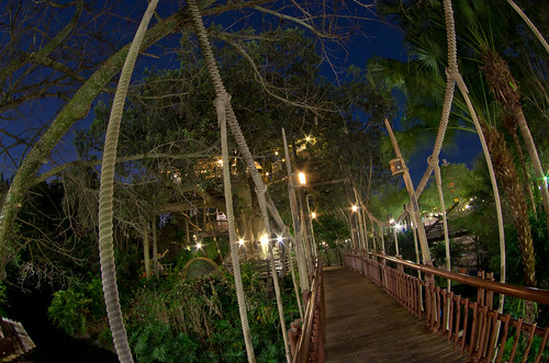 Swiss Family Robinson Treehouse at night
