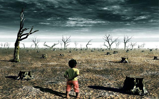 cambio-climatico-efecto-diarioecologia.jpg