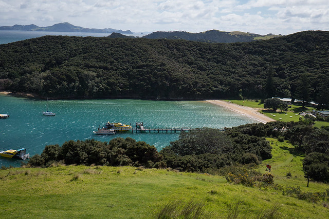 Paihia Dolphin Cruise- North Island New Zealand Road Trip | New Zealand North Island Itinerary | must see | Attractions | Things to do in NZ | Tours | Points of interest | What to see | Highlights | Places to see | Budget Guide | Fun things | Camper van | Motorhome