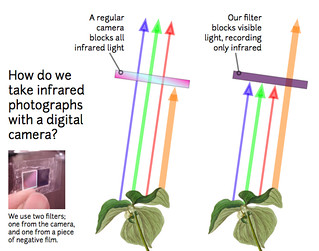 Public Laboratory: filtering infrared and visible light