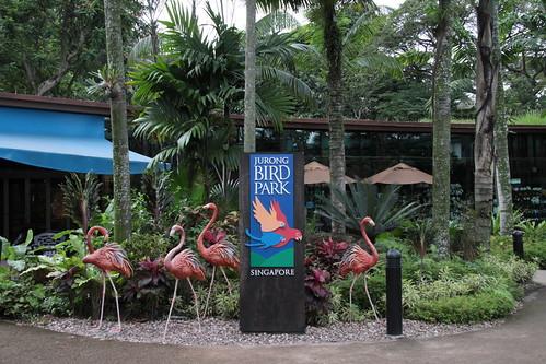 Jurong Bird Park, Singapore, 2011