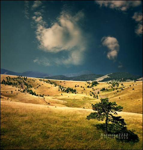 Pick a place for yourself - Zlatibor inspired.. :)))