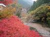 Photo:天河村 - Tenkawa village // 2010.11.14 - 13 By Tamago Moffle