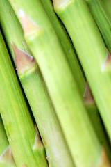 vegetable, welsh onion, produce, plant stem,