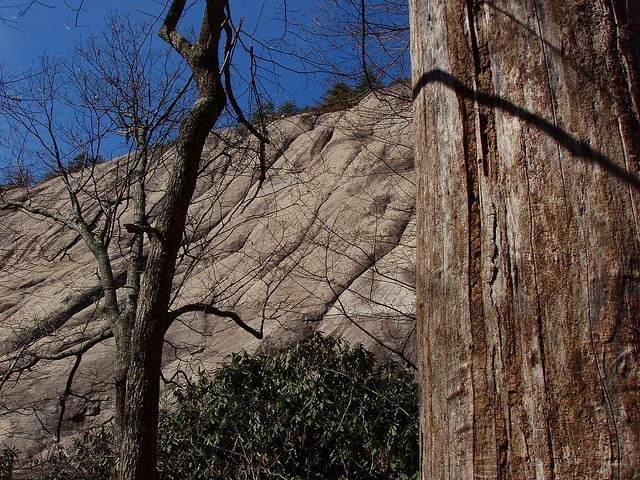 Swingers in cedar rock north carolina