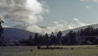 Inangahua Valley, West Coast, New Zealand, 1975