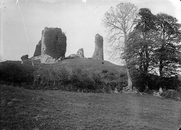 The castle, Narberth