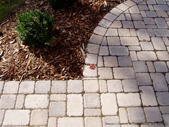 Concrete & Brick Pavers: Driveway Pavers & Pavestones from