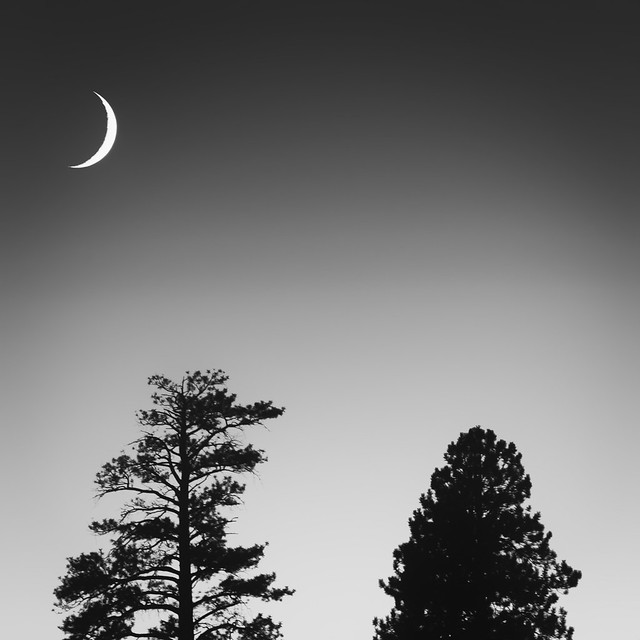Bryce Canyon Moonlight
