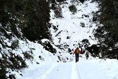 Une piste enneigée de Bavella sous la Punta Tafunata di Paliri
