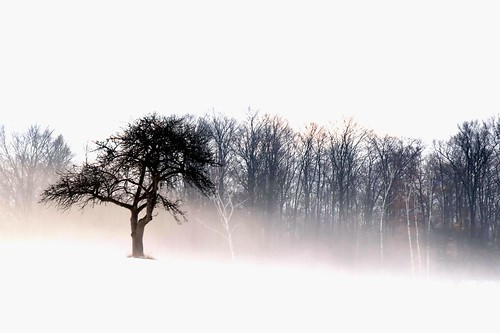 Out Of The Mist by ICT_photo