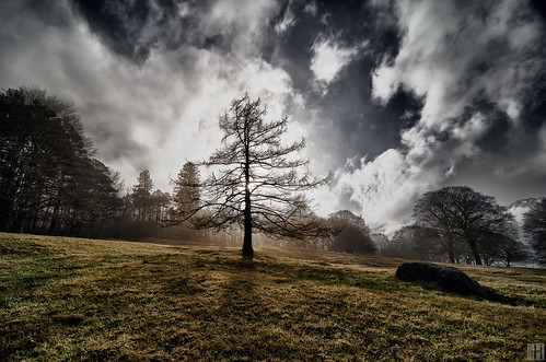 light sky sun tree clouds landscape waiting end liechtenstein gettyimages balzers