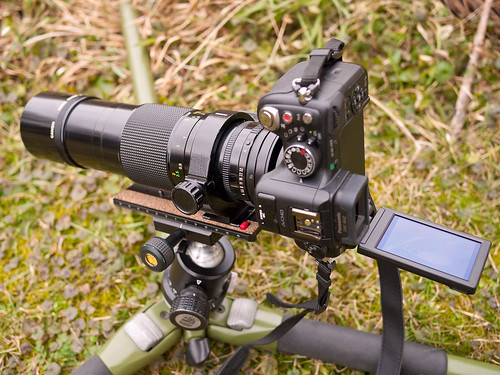 Panasonic LUMIX DMC-GH2 + Canon nFD 200/4 macro
