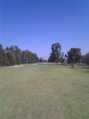 Eucalyptus Golf Club - Championship Course
