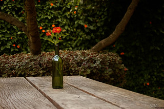 Still Life With The Bottle And Flowers
