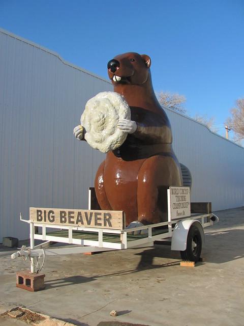 Beaver County Auto >> Beaver Oklahoma mascot   Flickr - Photo Sharing!