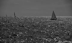 seascapes B&W