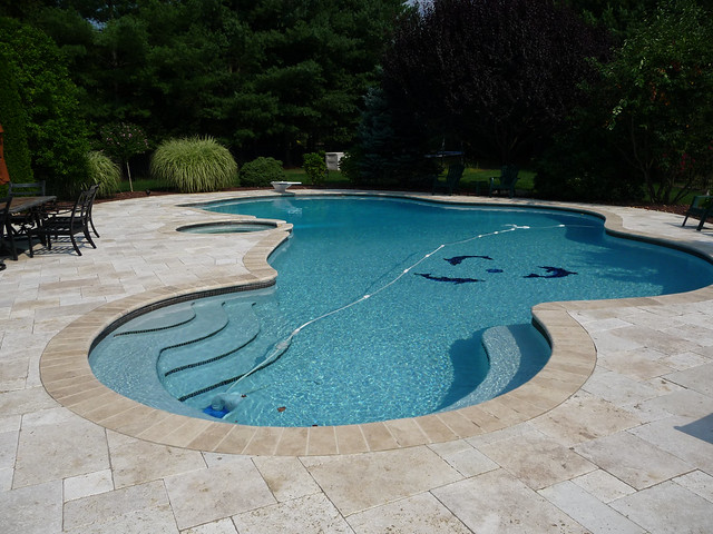 Luxury Custom Free Form Swimming Pool Design and Hot Tub