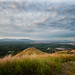 Small photo of Broga