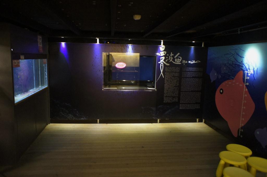 七星潭柴魚博物館 (16)