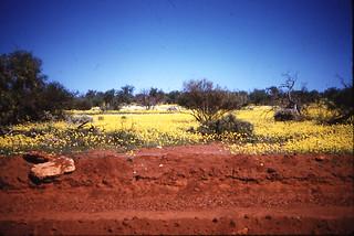 Carnarvon Highway, near Overlander Roadhouse - 1961
