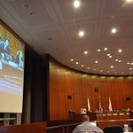 Naperville City Council Meeting 076