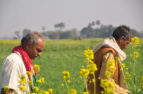 India - Jamnapur village, Bihar
