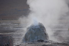 wind wave(0.0), wave(0.0), coast(0.0), blowhole(1.0), body of water(1.0), geyser(1.0), rock(1.0),