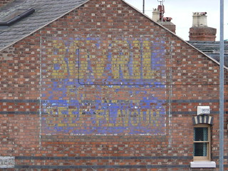 Chester - Ghost Sign, South View Road 110202