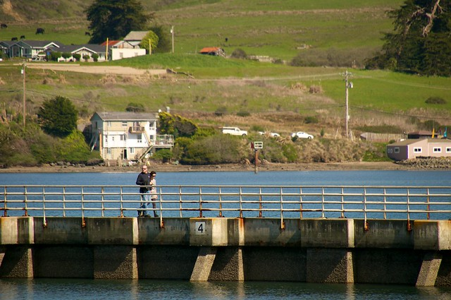 Fishing off the pier in bodega bay harbor flickr photo for Bodega bay fishing reports