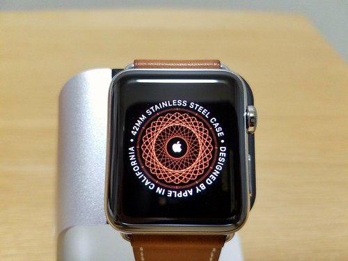 Applr Watch Hermes