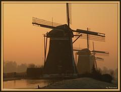 Morning mills II