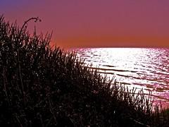 Pacific Coast, Northern California
