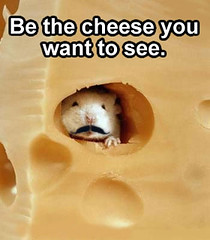 Be The Cheese