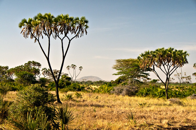 Beautiful savanna landscape flickr photo sharing - Beautiful panoramic view house to take full advantage of the scenery ...