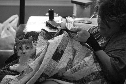 Tenzing, Amy, and a quilt