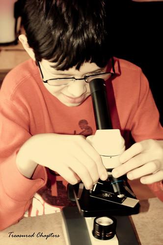 Smores Microscope