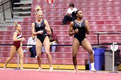 floor gymnastics, sports, athlete,