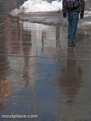 Reflection in Wet Pavement