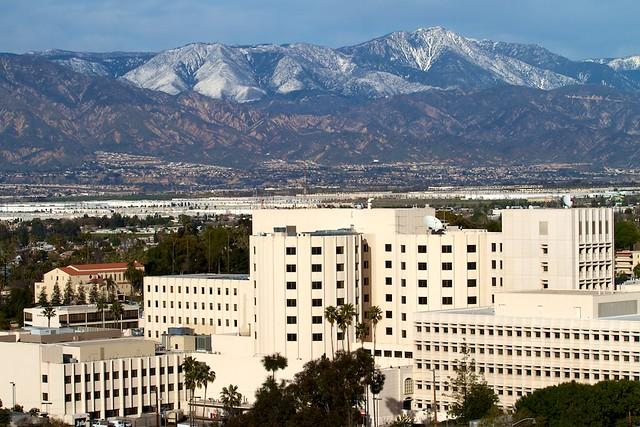 Loma Linda University Room For Rent